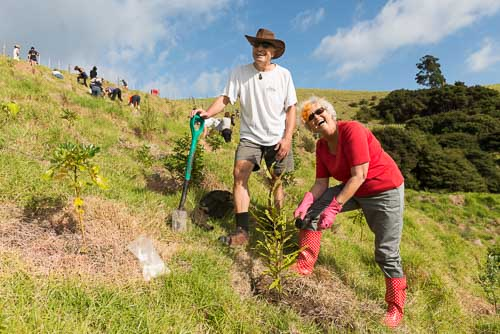 wildlife conservation volunteering new zealand